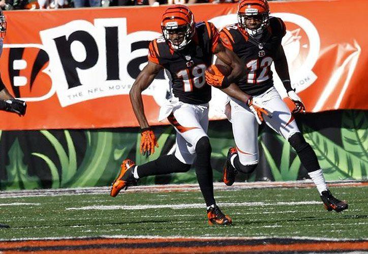 Cincinnati debe sacar la victoria de visita ante Filadelfia si quiere aspirar a la postemporada. (Foto: Bengals.com)