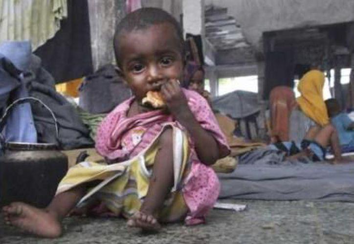 Los niveles de hambre en el mundo han aumentado por primera vez en más de una década. (El Financiero).