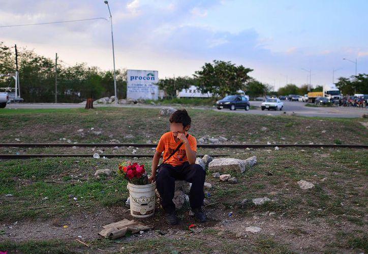 Es común observar a menores vendiendo flores, dulces o cigarros en Mérida. (Foto: Luis Pérez/archivo de Milenio Novedades)