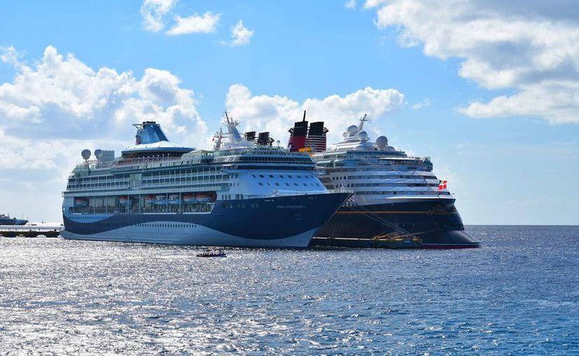 Arribarán 32 cruceros entre el 11 y el 17 de diciembre en la Isla de las Golondrinas. (Gustavo Villegas/SIPSE)