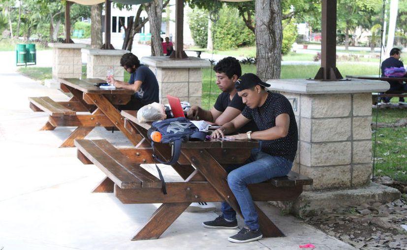 La Uqroo fue ubicada por la compañía británica Quacquarelli Symonds, como una de las 50 mejores universidades de México.  (Daniel Tejada/SIPSE)