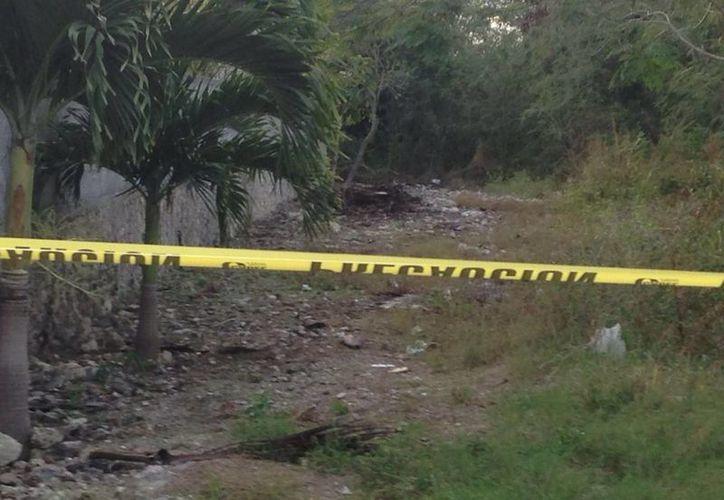 Este es el terreno baldío donde fue hallado el cadáver de un hombre, con la quijada destrozada, en Paraíso, Progreso. (Gerardo Keb/Milenio Novedades)
