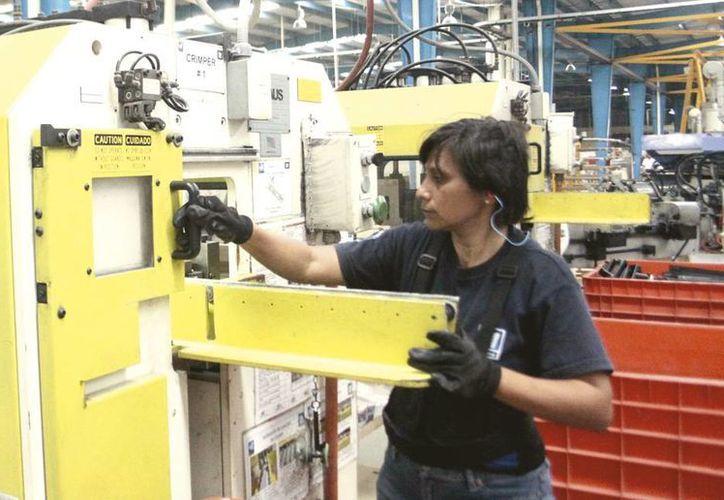 Los empleos relacionados con la tecnología han despuntado en los últimos años. (Milenio Novedades)