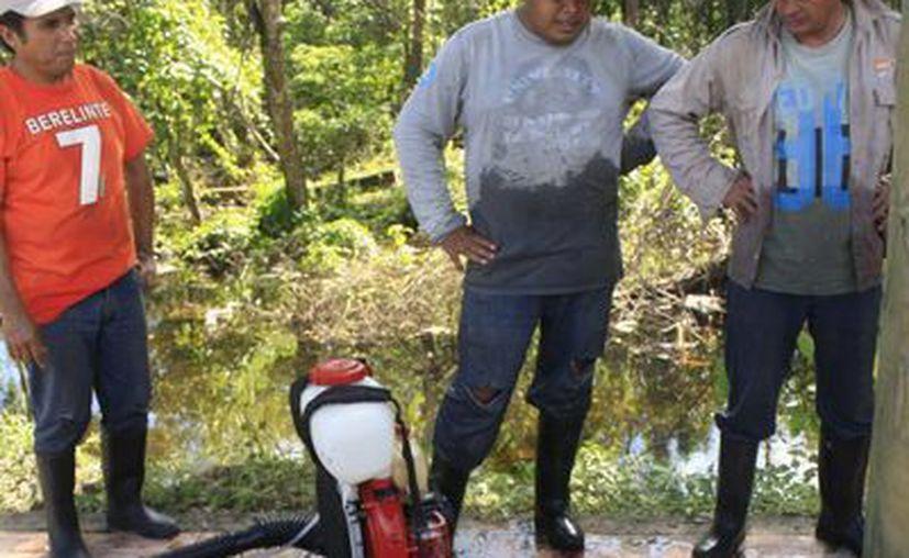 Los casos de dengue podrían aumentar un 7% en 2015 en temporadas de lluvias. (Harold Alcocer/SIPSE)