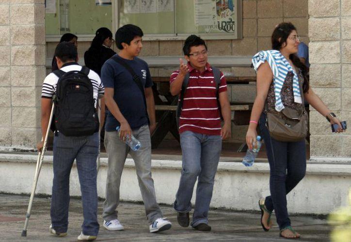 Cada año, entre 900 y mil egresados de casas de estudio de nivel superior se encuentran con barreras en el campo laboral, de acuerdo con cifras de la asociación de profesionistas. (Enrique Mena/SIPSE)
