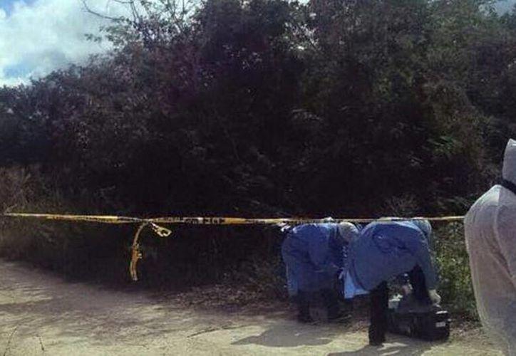 Policía ministerial detuvo a un acusado del homicidio. Imagen del lugar donde se descubrió el cadáver de Martha Eugenia. (Archivo/SIPSE)