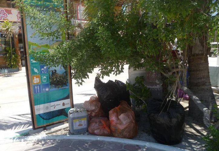 Las bolsas de basura en el parque dan mala imagen, generan moscas y pestilencia. (Raúl Balam/SIPSE)