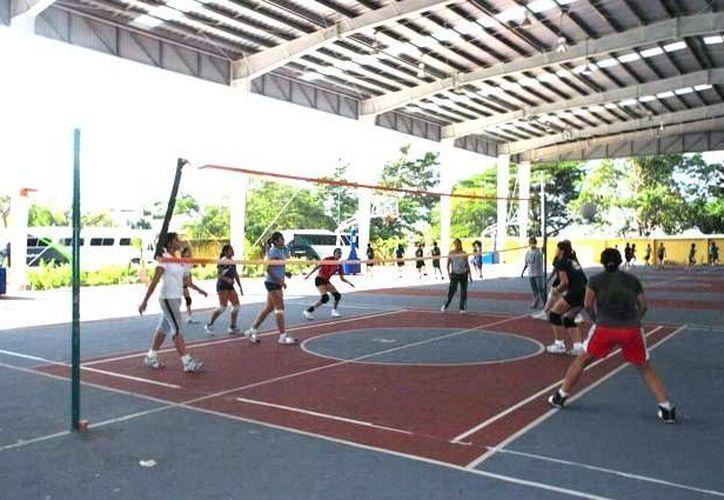 Yucatán se preparará en Monterrey para la fase estatal y regional de la Olimpiada Nacional en volibol. (SIPSE)
