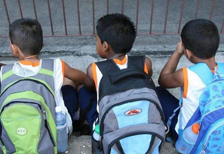 Los niños cargan mochilas que llegan a pesar hasta 25 kilos. (SDP Noticias)