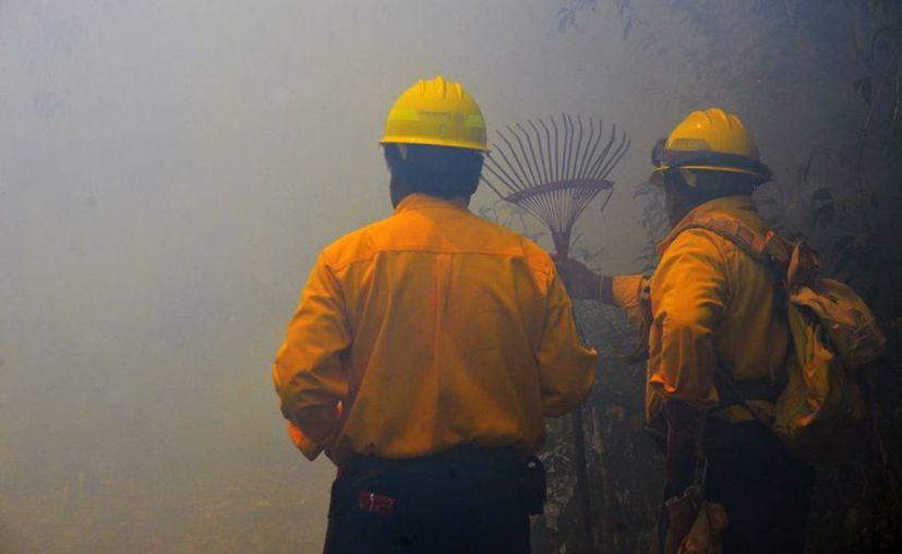 Las quemas agropecuarias son la principal causa de afectación en el estado.     (Ángel Castillo/SIPSE)