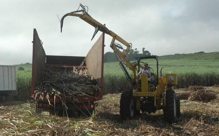 Con la cancelación de la exportación de azúcar hacia los EU, se habían quedado varadas unas 25 mil Tons. en Puerto Progreso, Yucatán.