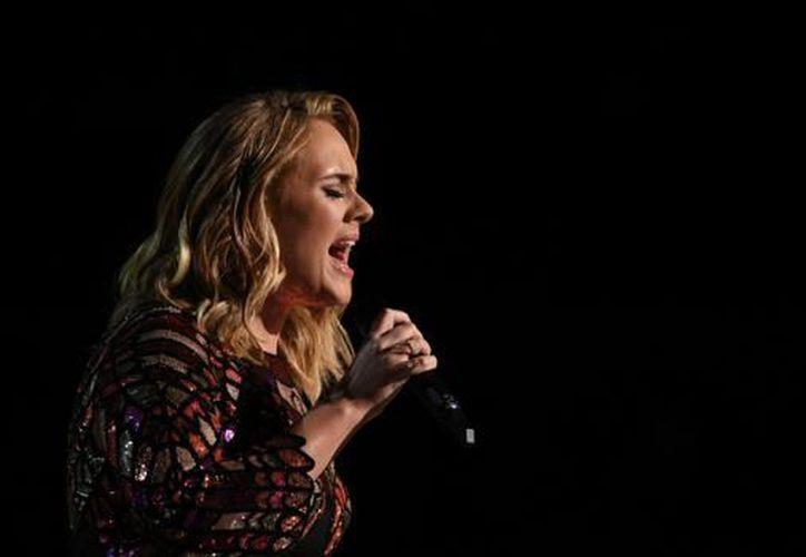 La cantante se sometió a una cirugía vocal en 2011. (AFP)