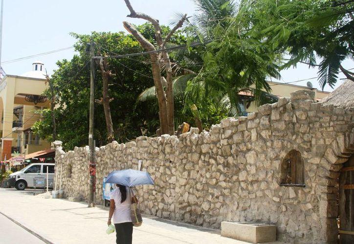 El predio ubicado en el corazón de la zona turística fue clausurado por la tala y la poda de al menos dos árboles, al parecer almendros. (Octavio Martínez/SIPSE)