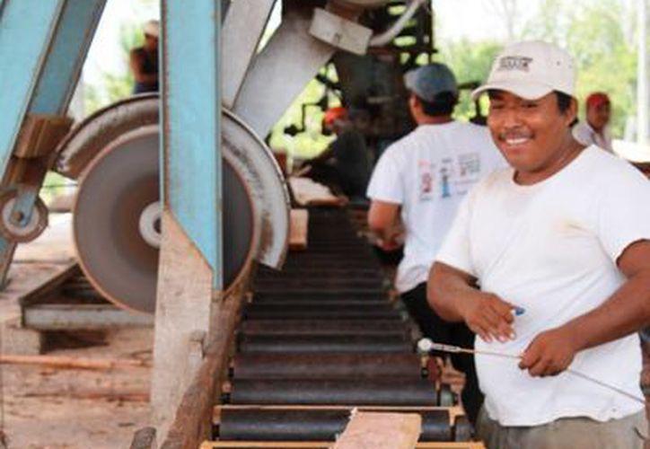 La acreditación internacional permitirá aumentar la exportación de la producción. (Edgardo Rodríguez/SIPSE)