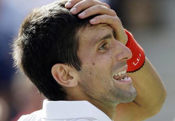Djokovic aseguró el primer puesto en el ranking de la ATP. (Foto: Agencias)
