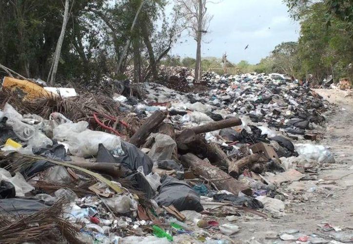 La capacidad del basurero municipal de Tulum se encuentra rebasada. (Rossy López/SIPSE)