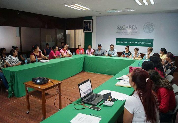 Los beneficiaros participaron en el curso de inducción de la Sagarpa para el uso correcto y transparente de los apoyos. (Edgardo Rodríguez/SIPSE)