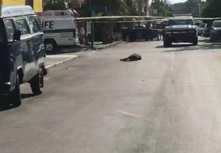 El cuerpo quedo tirado en medio de la calle. (Redacción/SIPSE)