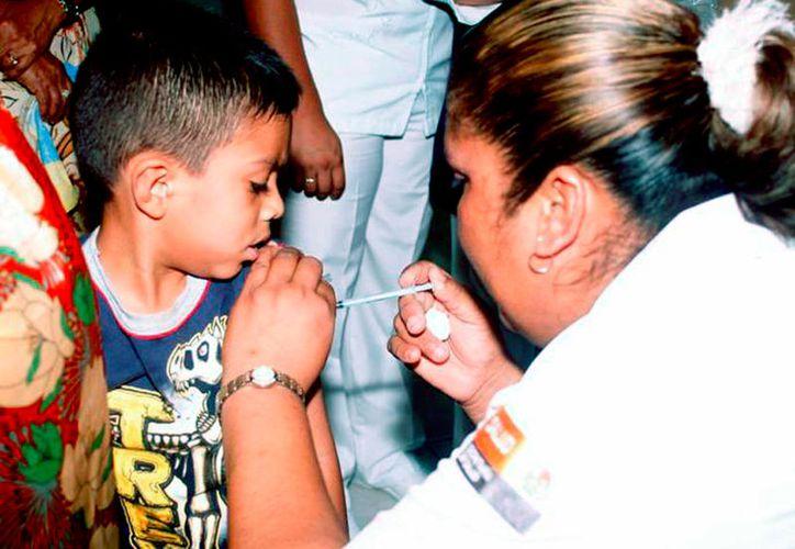 20 de mayo el personal de la Sesa aplicará cerca de 30 mil dosis para completar esquemas de vacunación. (Foto: Redacción / SIPSE)