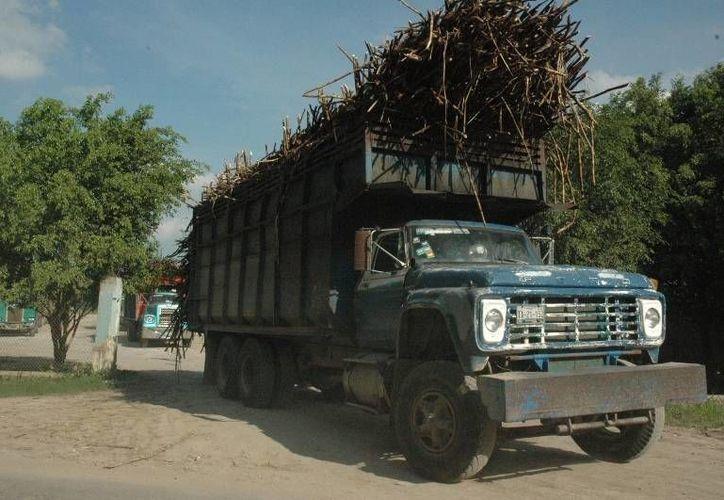 En 109 días de zafra se reporta una producción de 910 mil toneladas de caña de azúcar. (Edgardo Rodríguez/SIPSE)