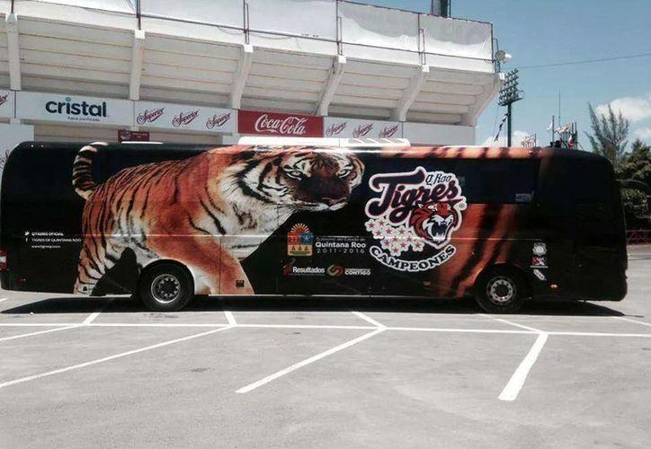 El Tigrebus, luce once estrellas en su escudo que representan los once campeonatos que han logrado en su historia. (Redacción/SIPSE)