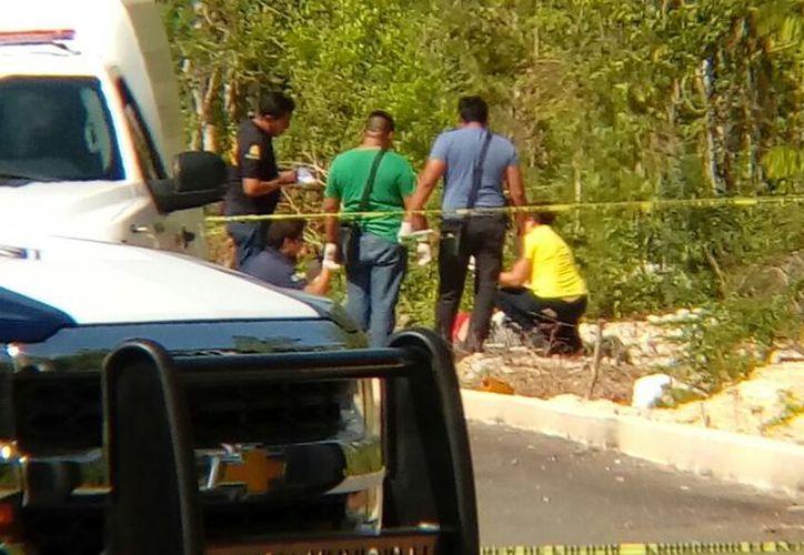 Uno de los cuerpos fue hallado el pasado lunes en un paraje solitario de la Región 248. (Redacción/SIPSE)