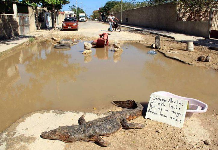 La carretera, prácticamente, está convertida en un lago. (José Acosta/SIPSE)