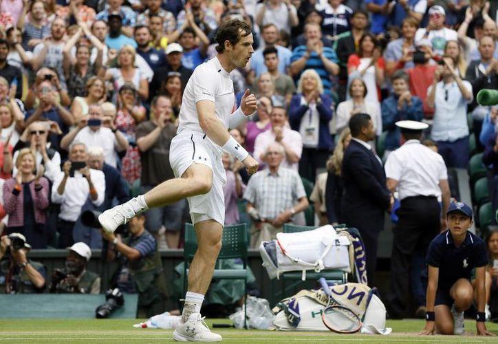 El tenista Andy Murray ganó en Wimbledon y ahora está entre los ocho mejores, con grandes posibilidades de ser campeón. (AP)