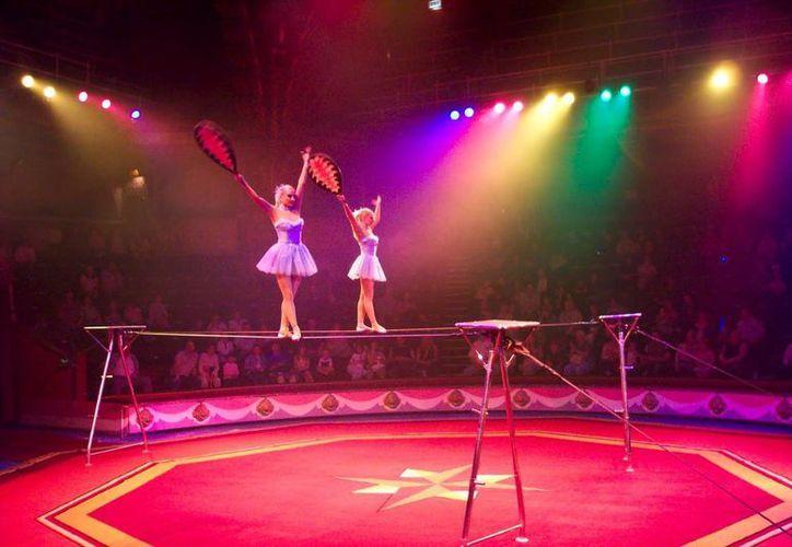 """El circo """"Scalibu"""", nació en Cancún y ahora presenta nuevos espectáculos sin animales. (Redacción/SIPSE)"""