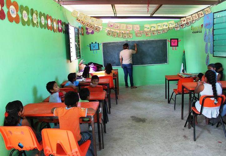 Según la Secretaría de Educación y Cultura de Quintana Roo la matrícula de niños indígenas es de tres mil 200 estudiantes. (Harold Alcocer/SIPSE)