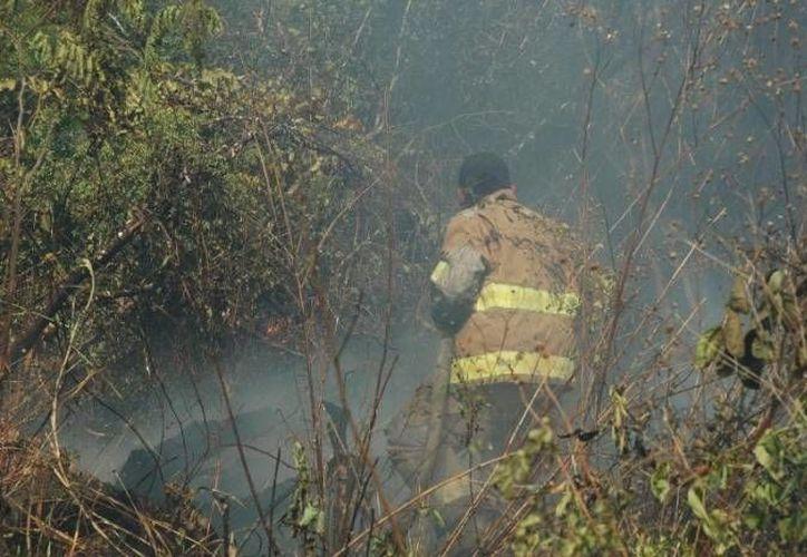 El incendio que cumplió nueve días activo, presenta un control del 70 por ciento. (Redacción/SIPSE)