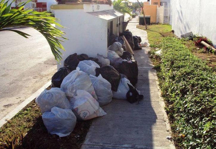 Actualmente Villas del Sol y la Colosio, son las colonias en donde se genera más basura en el municipio de Solidaridad. (Octavio Martínez/SIPSE)