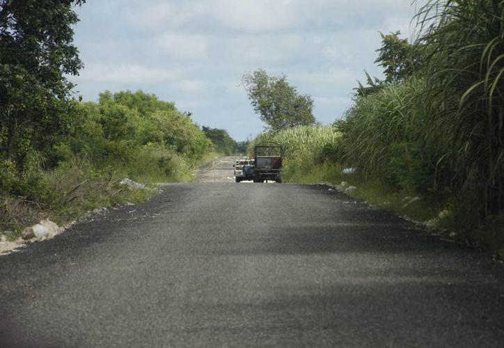 La meta programada es la construcción de 300 caminos en comunidades de los cuatro municipios del sur del estado. (Harold Alcocer/SIPSE)