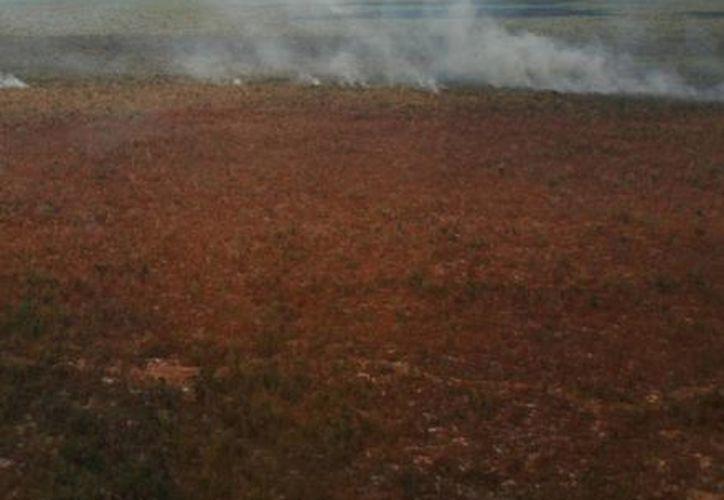 """El incendio """"Lázaro Cárdenas del Río"""" está controlado es un 60%. (Adrián Barreto/SIPSE)"""