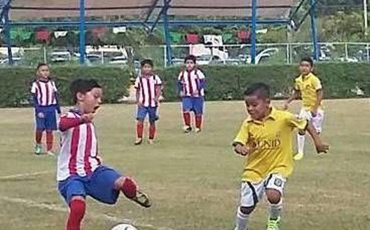 """Los """"Pancitas Verdes"""" buscan consolidarse como uno de los mejores conjuntos filiales en el balompié infantil y juvenil local. (Ángel Mazariego/SIPSE)"""