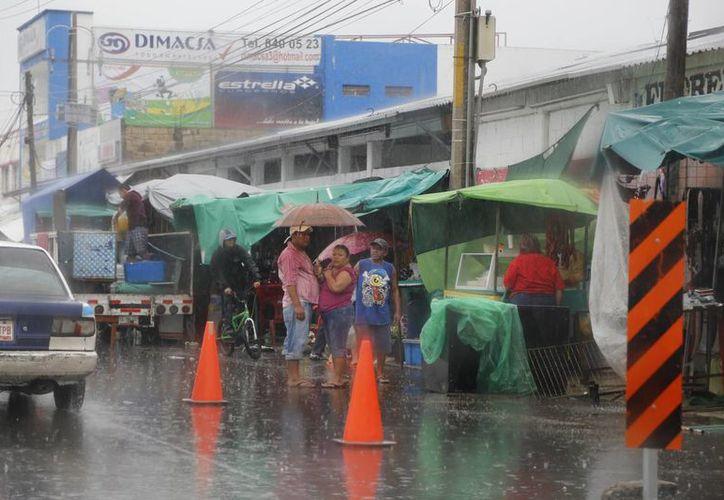 Los vendedores protegían sus productos con lonas, bolsas, y con paraguas se resguardaban de la lluvia. (Israel Leal/SIPSE)