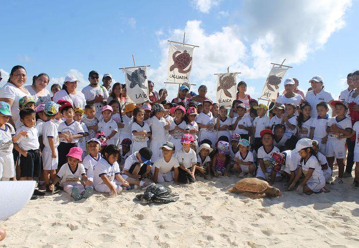 Promueven el cuidado y preservación de las tortugas marinas a través de talleres en Playa del Carmen. (Redacción/SIPSE)