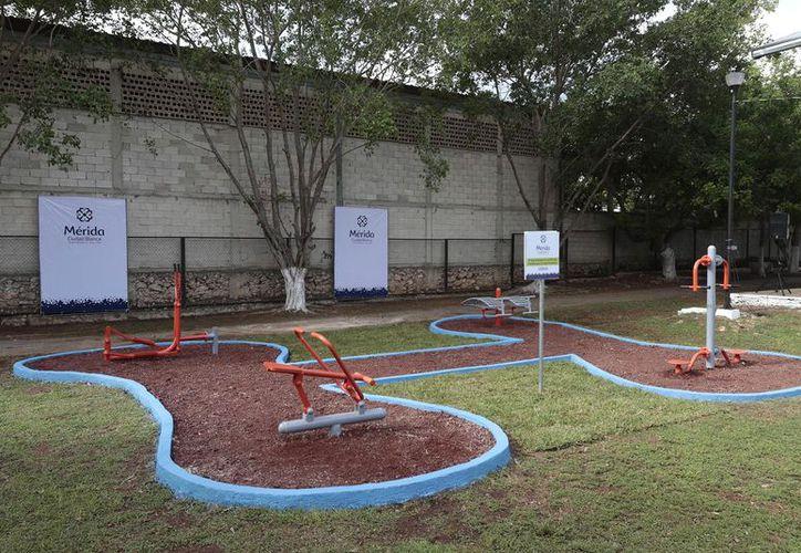 Las máquinas de ejercicio recién colocadas en el parque de la colonia Roble Agrícola II. (Milenio Novedades)