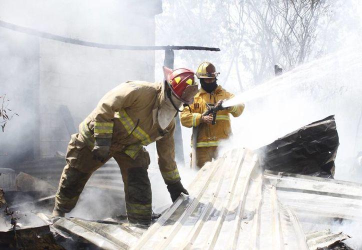 El equipo de bomberos recibe entre cinco y siete llamadas de auxilio para apagar siniestros. (Sergio Orozco/SIPSE)
