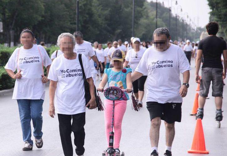 Familias completas recorrieron el Paseo de Montejo en el evento el evento 'Yo camino con los abuelos'. (Jorge Acosta/SIPSE)