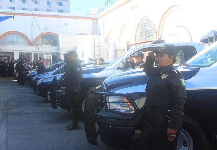La detección de marihuana y las revisiones a vehículos fueron parte del operativo de seguridad de vacaciones de verano. (Milenio Novedades)