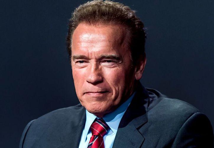 Un insecto ha recibido el nombre de Megapropodiphora arnoldi en honor a Arnold Schwarzenegger. (Foto: CouchFun)