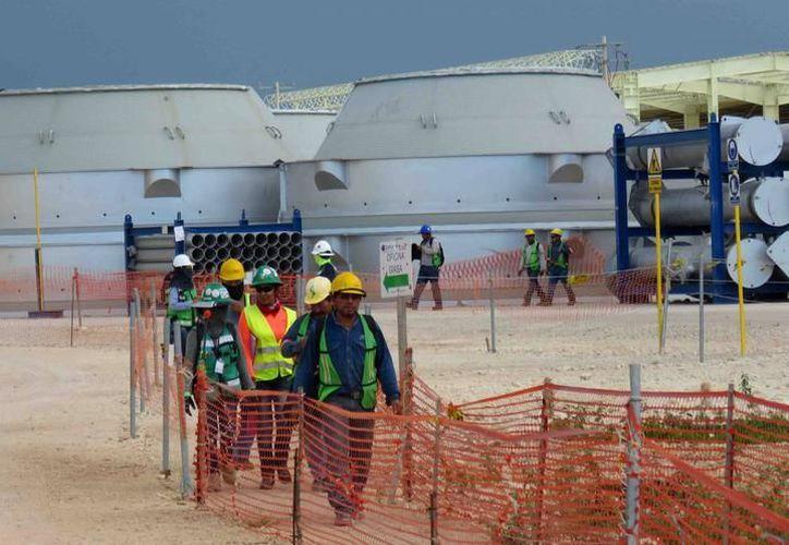 La nueva empresa se establecerá en un área de 30 hectáreas de terreno. (Archivo/SIPSE)