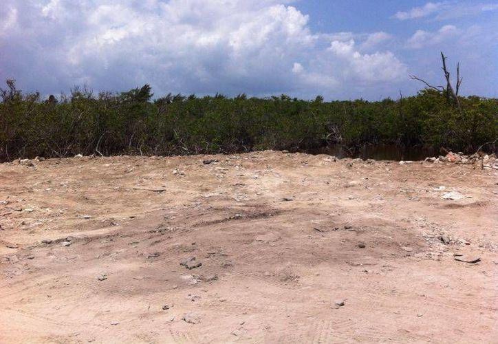 Así luce el predio en el que se clausuró la construcción de un campo de golf del hotel Grand Coral, en donde antes había manglar.  (Octavio Martínez/SIPSE)