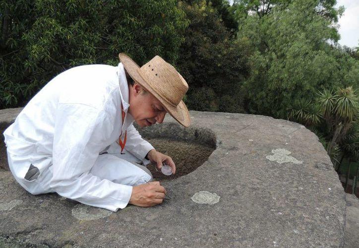 Posiblemente los cuicuilcas y después los teotihuacanos fueron las primeras culturas mexicanas en residir en el edificio prehispánico recién hallado por el INAH en Texcoco, Estado de México. (Notimex/Foto de contexto)