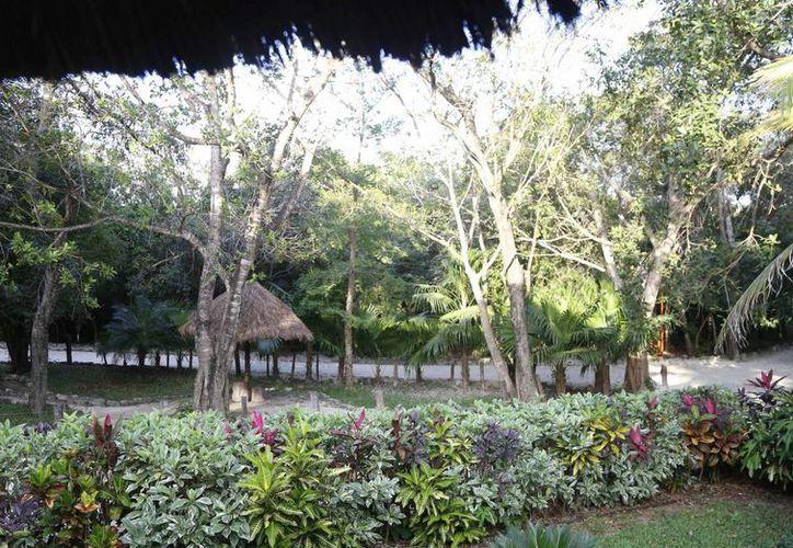 El museo se encuentra ubicado dentro del Parque Kabah. (Israel Leal/SIPSE)