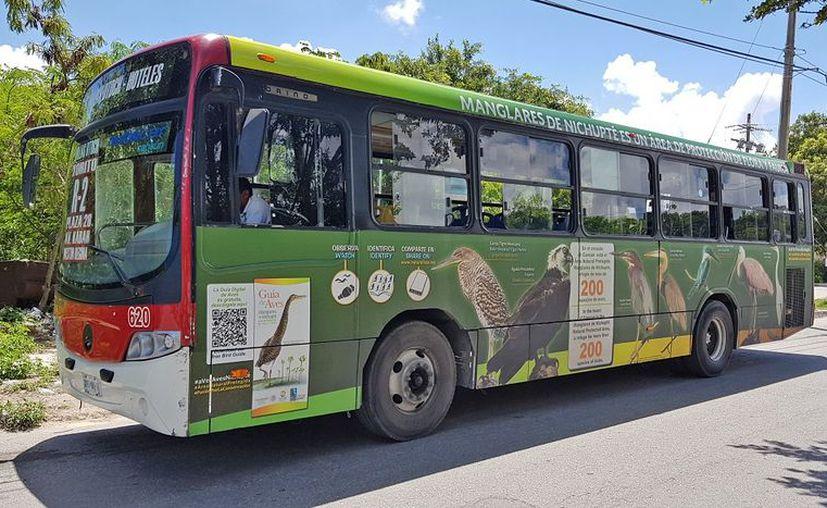 El vehículo porta un código QR que permite a los ciudadanos interactuar para proporcionar información de las aves. (Eva Murillo)