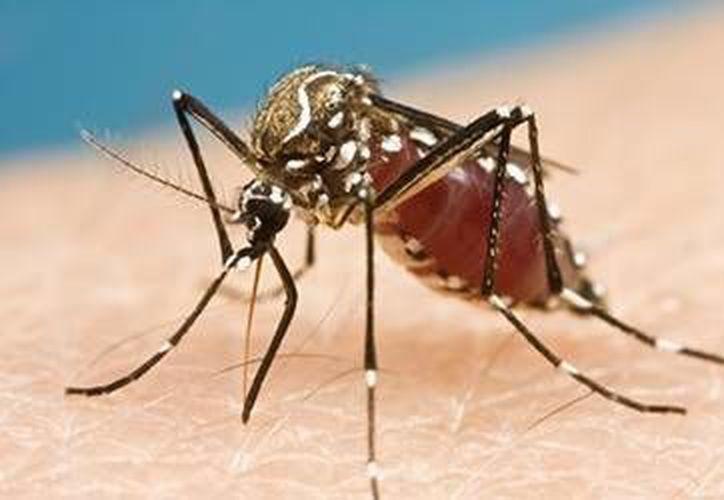La Secretaría de Salud invita a la población a unirse a la campaña de prevención contra el contagio. (Contexto/Internet)