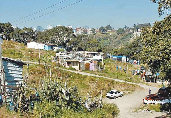 En Tierra Nueva hay familias de Hidalgo, Querétaro, Puebla, Oaxaca y Veracruz. (Nelly Salas/Milenio)