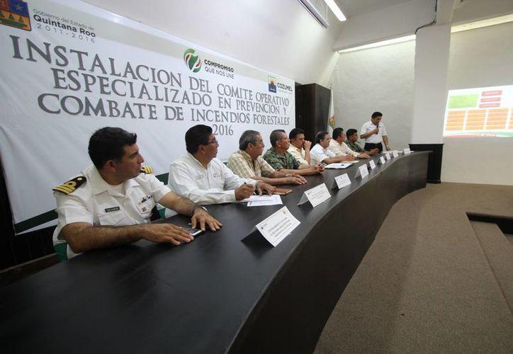 En los últimos 14 años se han registrado un total de 12 incendios forestales. (Gustavo Villegas/SIPSE)